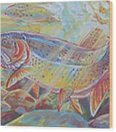 Fine Spotted Cutthroat Trout Wood Print by Jenn Cunningham