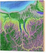 Finger Lakes Map Art Wood Print by Paul Hein