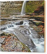 Finger Lakes Waterfall Wood Print