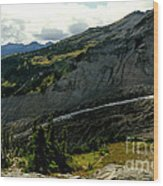 Finger Of Nisqualy Wood Print