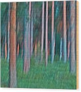 Finland Forest Wood Print