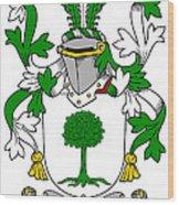 Finnerty Coat Of Arms Irish Wood Print