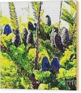 Fir Tree Buds Abstract Wood Print