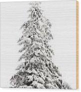 Fir Tree In Winter Wood Print