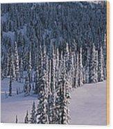Fir Trees, Mount Rainier National Park Wood Print