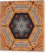 Fire Circle Wood Print