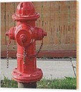 Fire Hydrant 3 Wood Print