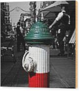 Fire Hydrant From Little Italy Wood Print