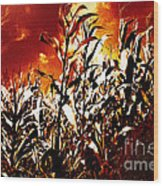 Fire In The Corn Field Wood Print
