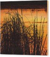Fire On The Marsh Wood Print