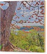 Fire Tree Wood Print by George Paris