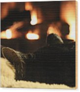 Fireside Cat Nap Wood Print