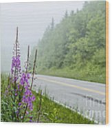 Fireweed And Fog Scenic Highway Wood Print