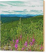 Fireweed And Mountains From Top Of The World Highway-yukon Wood Print