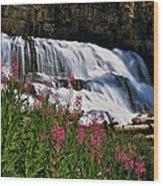 Fireweed Blooms Along The Banks Of Granite Creek Wyoming Wood Print
