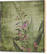 Fireweed - Featured In 'comfortable Art' Group Wood Print