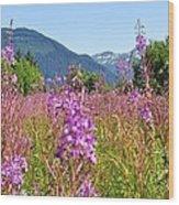 Fireweed Field Wood Print