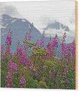 Fireweed Wood Print