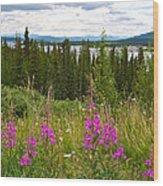 Fireweed Near Bridge Across Nisutlin River To Teslin-yk  Wood Print