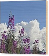 Fireweed Sky Wood Print