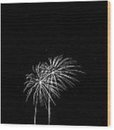 Firework Palm Trees Wood Print