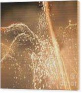 Firework Shower Wood Print