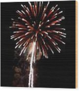 Fireworks 14 Wood Print by Mark Malitz