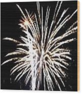 Fireworks 2 Wood Print by Mark Malitz