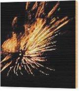 Fireworks 2 Wood Print by Stephanie Kendall
