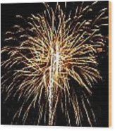 Fireworks 3 Wood Print by Mark Malitz