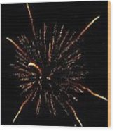 Fireworks 4 Wood Print by Mark Malitz