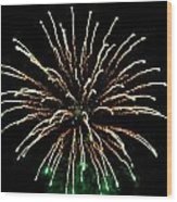 Fireworks 5 Wood Print by Mark Malitz