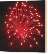 Fireworks 6 Wood Print by Mark Malitz