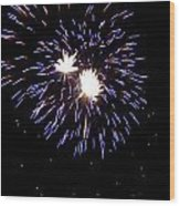 Fireworks 7 Wood Print by Mark Malitz