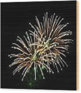 Fireworks 8 Wood Print by Mark Malitz