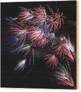 Fireworks 9 Wood Print by Sandy Swanson