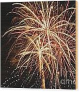 The 4th Of July Wood Print