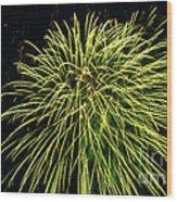 Fireworks At Night 8 Wood Print