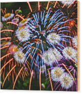 Fireworks Flower Abstract Wood Print