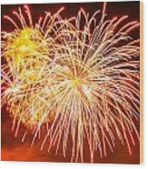 Fireworks Flower Wood Print by Robert Hebert