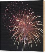 Fireworks Series Xiv Wood Print by Suzanne Gaff