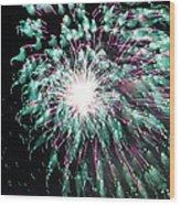 Fireworks Splendor Wood Print