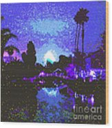 Fireworks Venice California Wood Print by Jerome Stumphauzer
