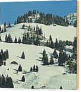 Firs Decoration Winterscape Wood Print