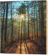 First Day In Heaven Wood Print