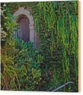 First Door On The Left Wood Print by Bill Gallagher