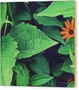 First flower Wood Print