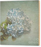 First Hydrangea - Texture Wood Print