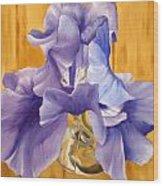 First Iris Of The Season Wood Print