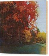 First Light Wood Print by Kris Parins